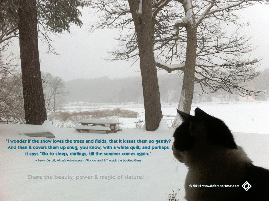 Winter Weather Funny Quotes Quotesgram: Winter Storm Quotes. QuotesGram