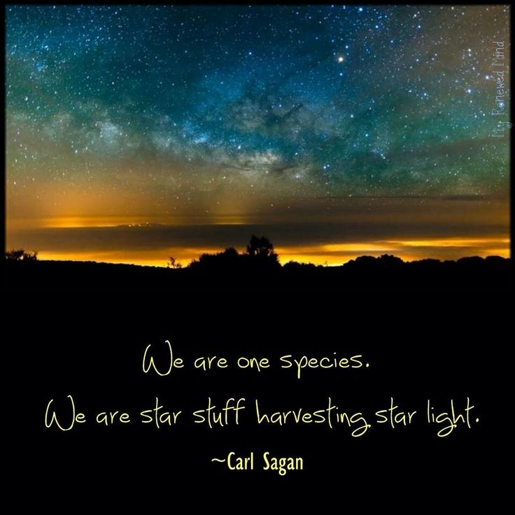 Our Duty Is Wakefulness The Fundamental Condition Of Life: Carl Sagan Quotes. QuotesGram