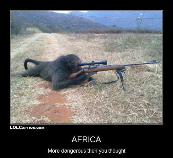 Funny African Quotes. QuotesGram