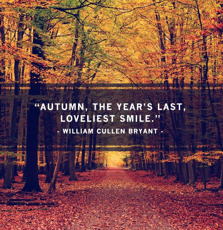 Inspirational Quotes For Fall Season. QuotesGram