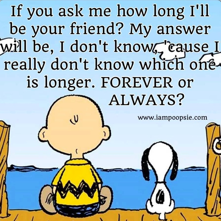 A Good Friend Quote: Charlie Brown Quotes About Friendship. QuotesGram