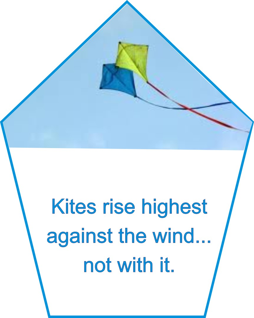 poetical analysis of the kite by Poetry unit – honors english 10 this packet contains every poem that we will be reading in the poetry unit woman with kite.