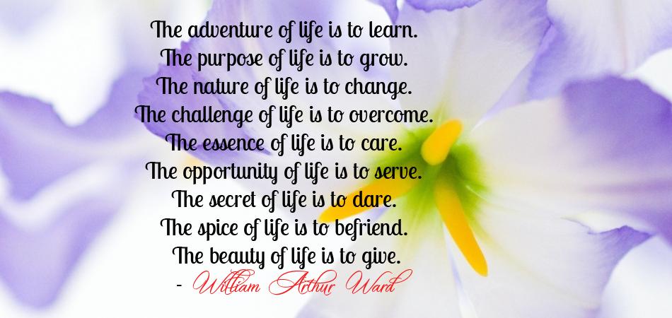 God S Wisdom Wise Quotes. QuotesGram |Thanking Gods Wisdom Quote