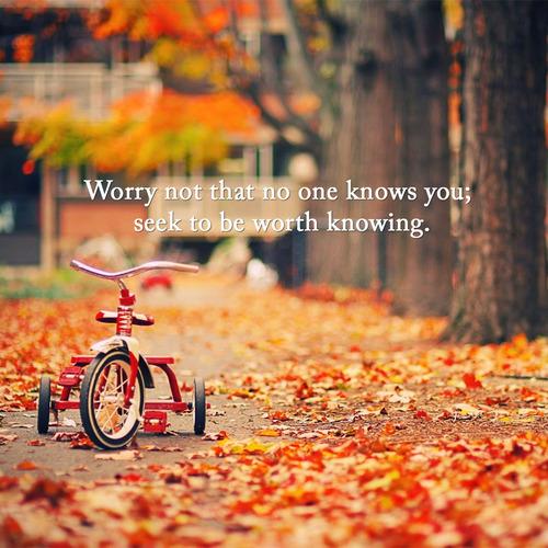 Tumbler Autumn Quotes. QuotesGram