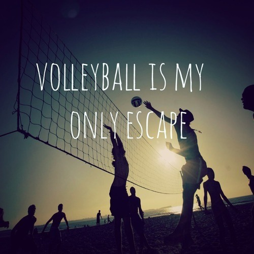 nike quotes for volleyball - photo #17