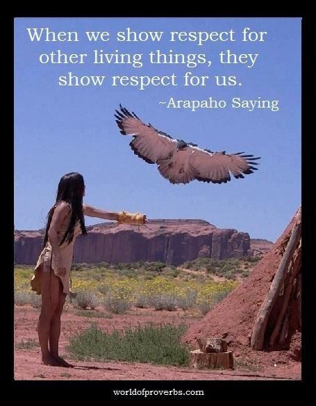 Citaten Frank Sinatra : Native american love quotes quotesgram