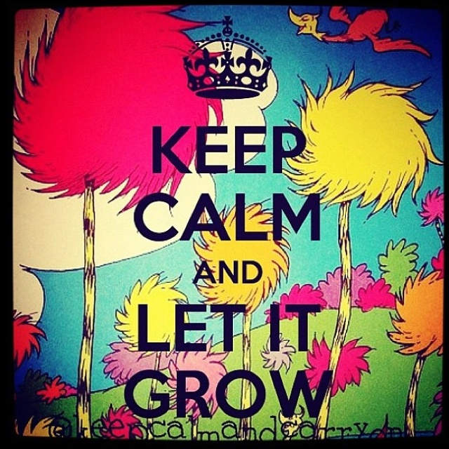 Quotes From The Lorax Quotesgram