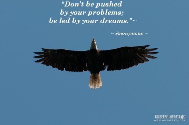 motivational quotes about success quotesgram