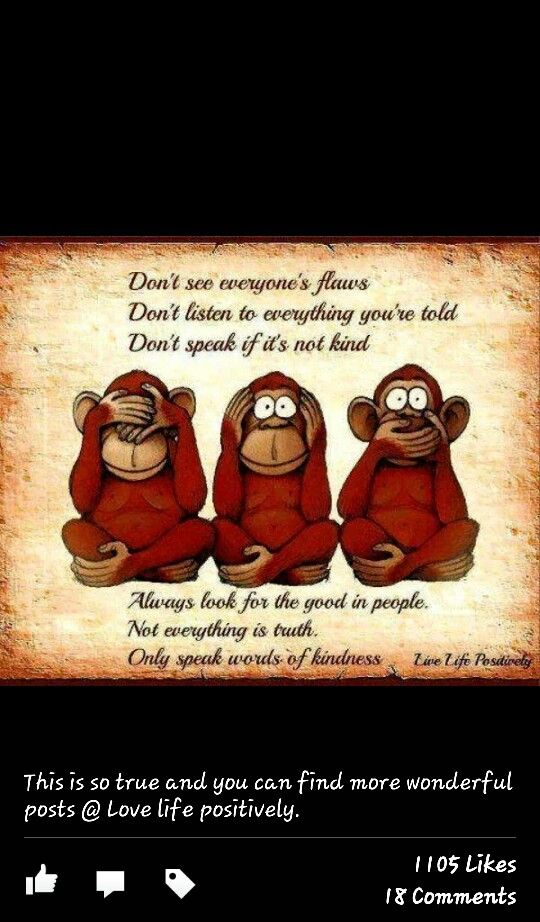 Funny Monkey Quotes And Sayings Quotesgram