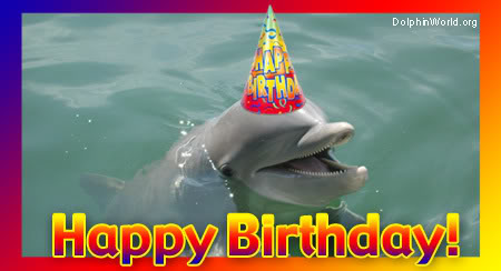 Birthday Quotes With Dolphins Quotesgram