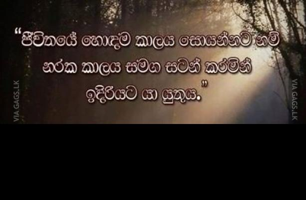 Success Quotes Sinhala Quotesgram