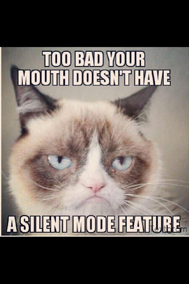 Grumpy Cat Work Quotes. QuotesGram