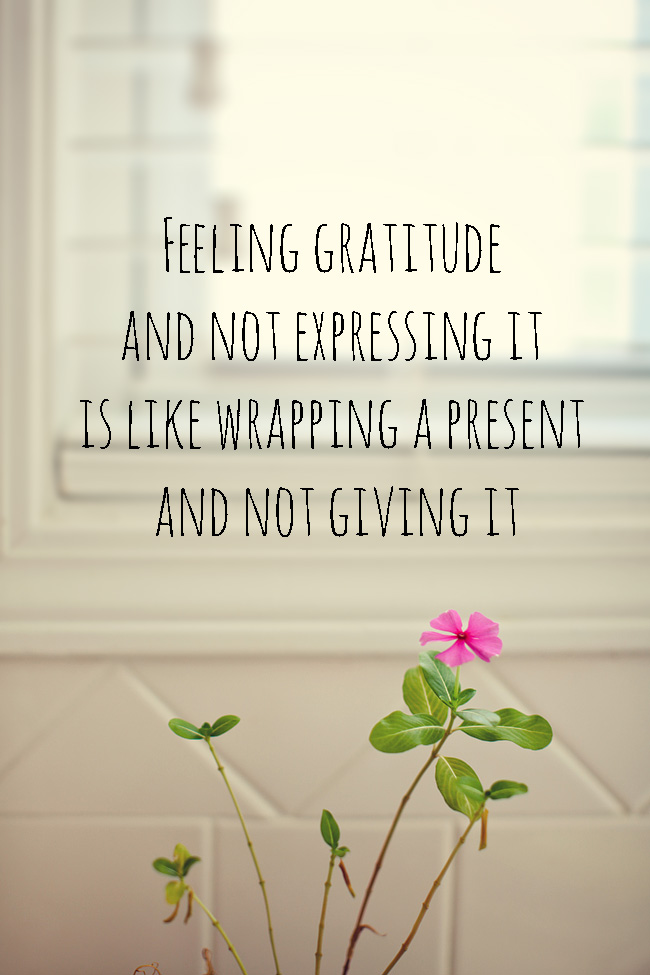 Quotes Expressing Gratitude Quotesgram