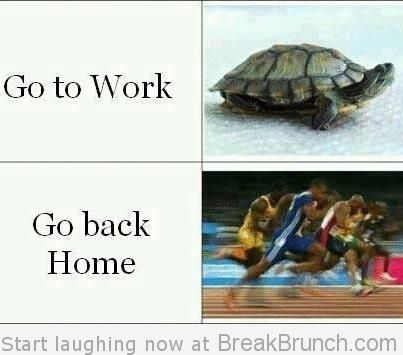 Funny Quotes About Coming Home. QuotesGram