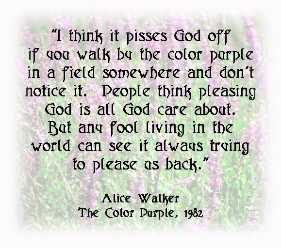 Purple Quotes: The Color Purple Book Quotes. QuotesGram