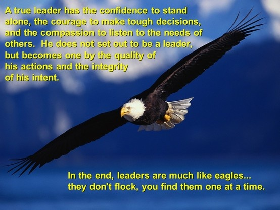 Leadership Quotes About Eagles. QuotesGram
