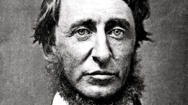 emerson thoreau individualism 1673 quotes from henry david thoreau: 'i learned this, at least, by my experiment : that if one advances confidently in the direction of his dreams, and endeavors.