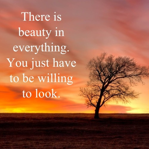 Natural Beauty Quotes Sayings