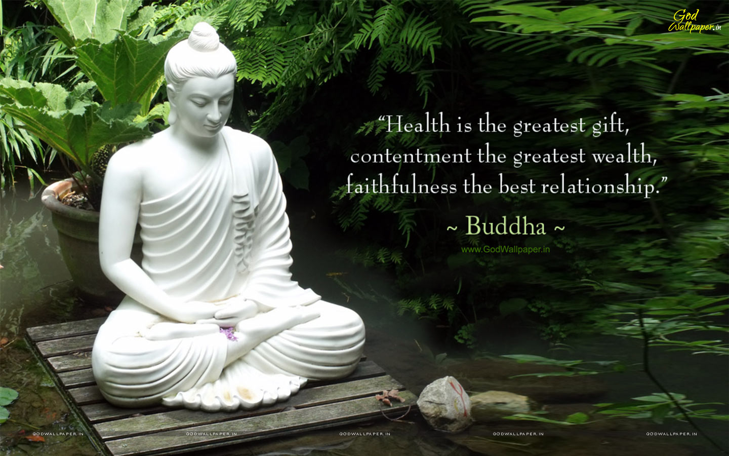 Buddha Quotes Background Screen Quotesgram