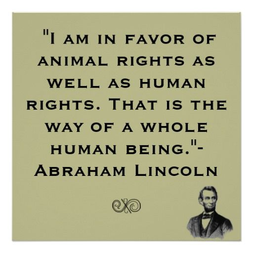 Famous Animal Rights Quotes: Quotes About Human Rights. QuotesGram