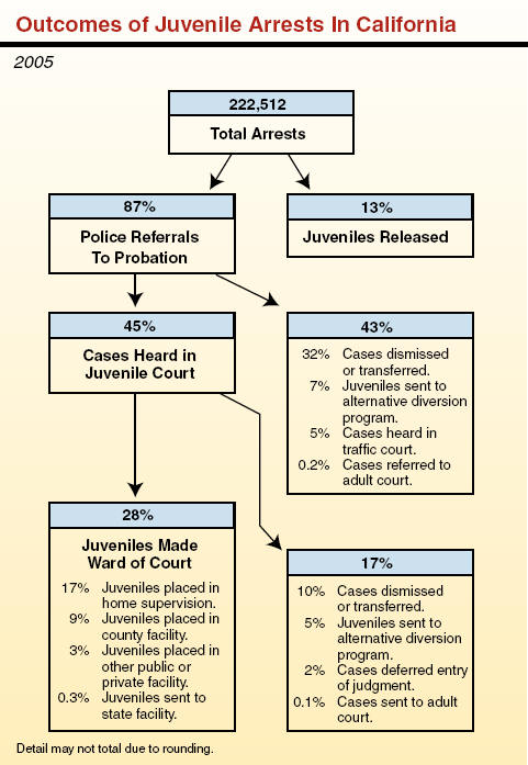 prosecuting juveniles in adult court Laws regarding the prosecution of juveniles as adults  the prosecution of juveniles as adults:  is convicted of a crime as an adult in circuit court.