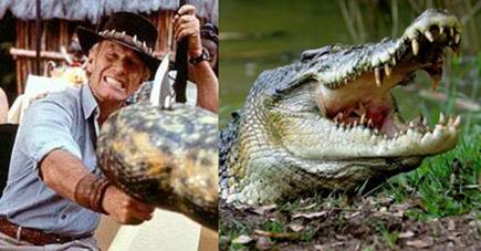 Crocodile Dundee Famous Quotes Quotesgram