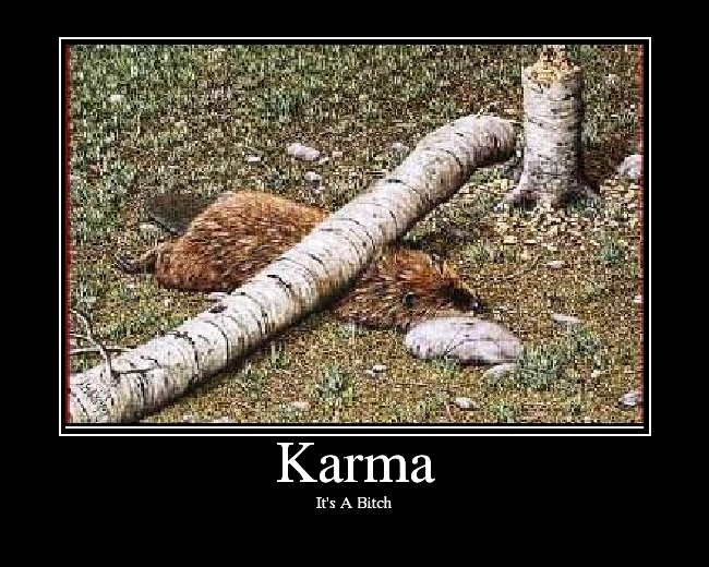 Karma Will Get You Quotes: Funny Karma Quotes. QuotesGram