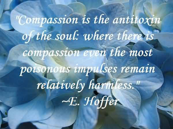 What's the Difference Between Empathy, Sympathy, and Compassion?