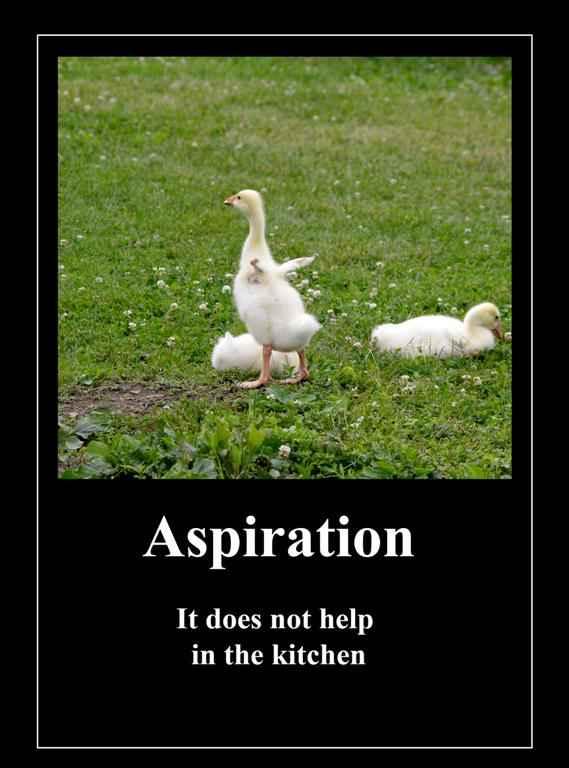 Anti Inspirational Quotes. QuotesGram