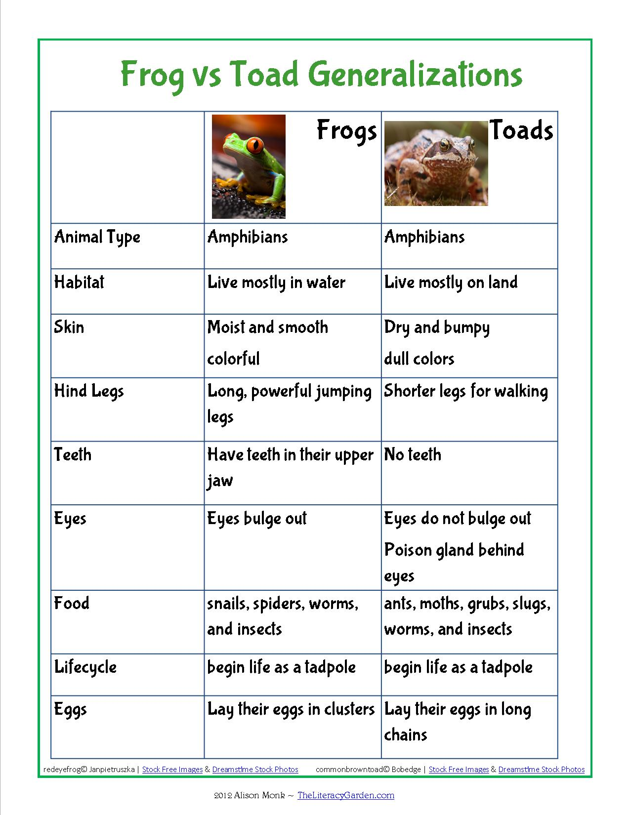 Quotes From Frog And Toad  Quotesgram