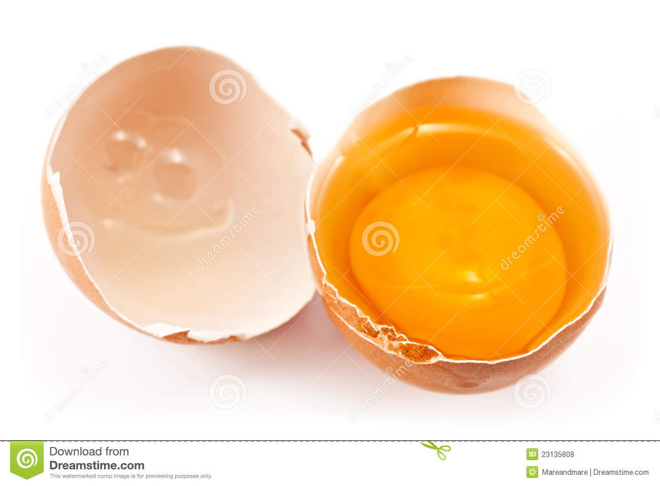 Chicken Egg Or The Quotes Quotesgram: Broken Egg Quotes. QuotesGram