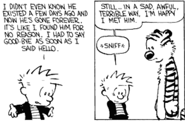 Calvin And Hobbes Goodbye Quotes. QuotesGram