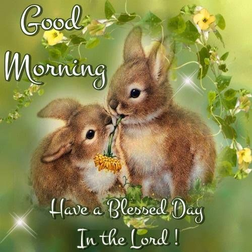 Have A Good Day Honey Quotes: Good Morning Have A Blessed Day Quotes. QuotesGram