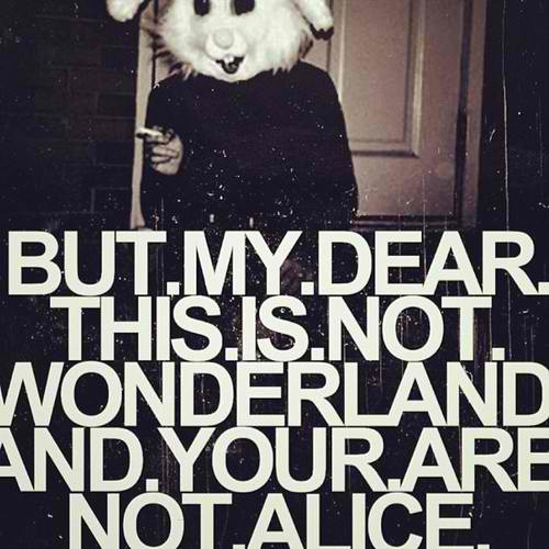 Alice In Wonderland Quotes Tumblr: Grunge Wonderland Quotes. QuotesGram
