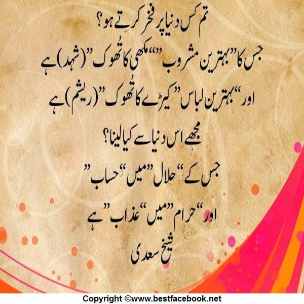 Sheikh Saadi Quotes In Urdu Quotesgram