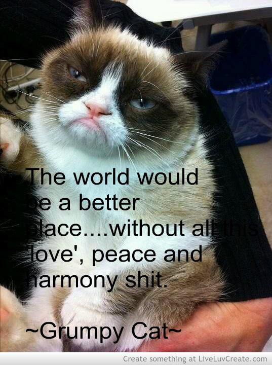 Gypsy quotes quotesgram - Fire Grumpy Cat Quotes Quotesgram
