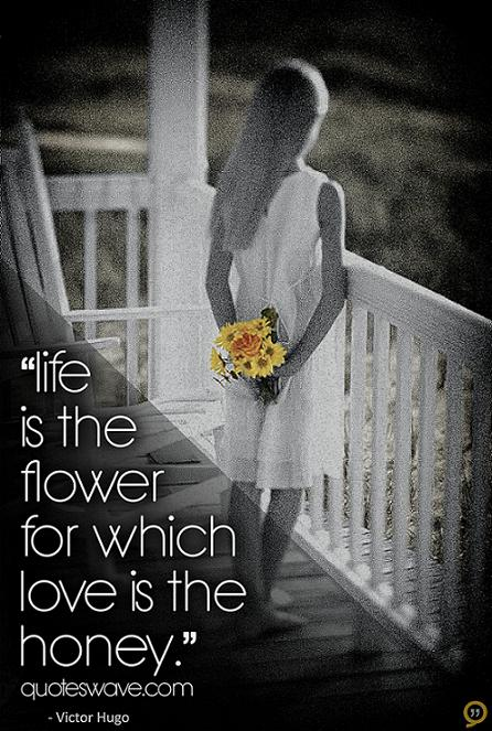 Love Quotes About Life: Love Blooms Quotes. QuotesGram