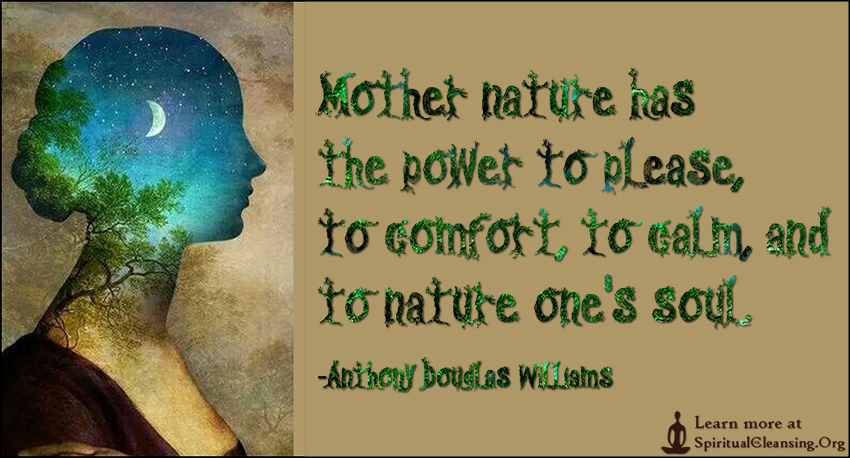 Mother Nature S Fury Quotes