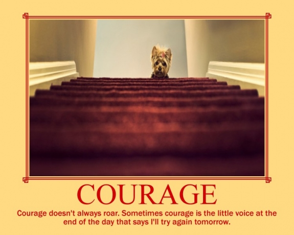 Tomorrow Funny Quotes Quotesgram: Funny Courage Quotes. QuotesGram