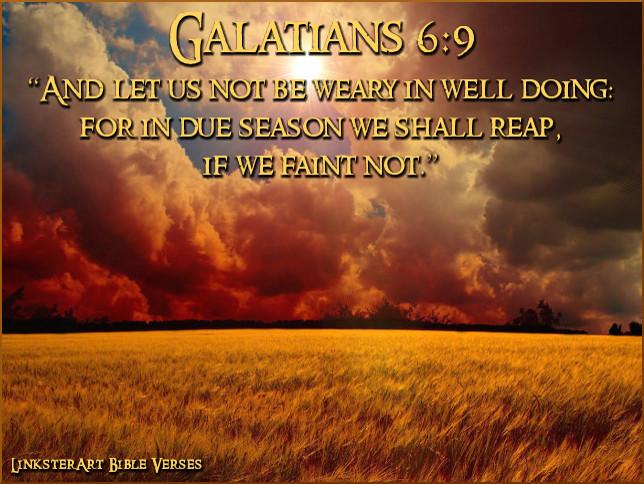 faith scripture kjv