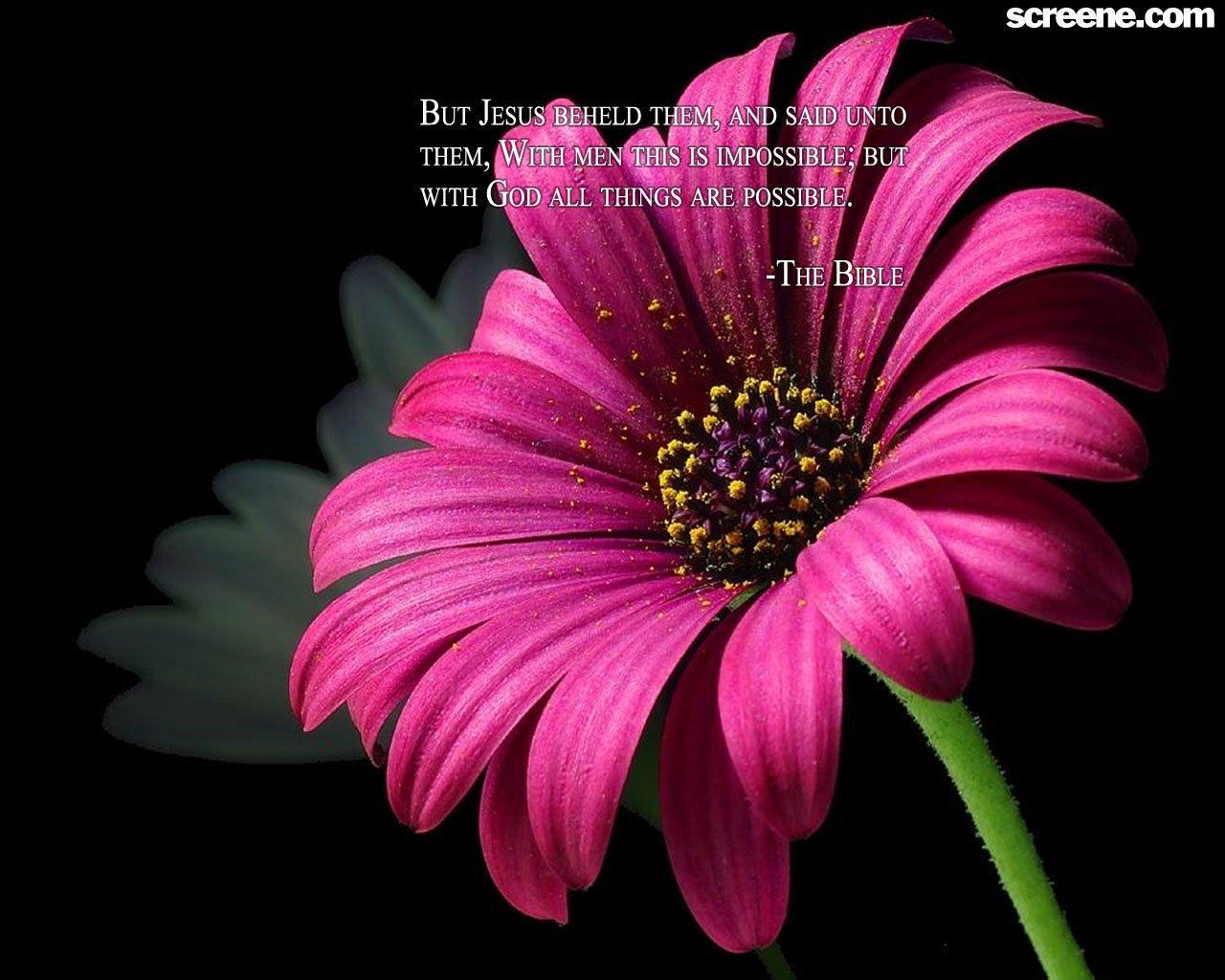 flower background quotes quotesgram