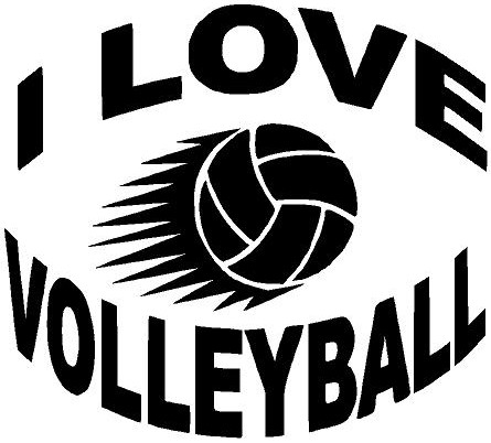 I Love Volleyball Quotes. QuotesGram I Love Volleyball Wallpaper