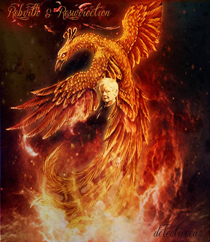 Phoenix Rebirth Quotes. QuotesGram