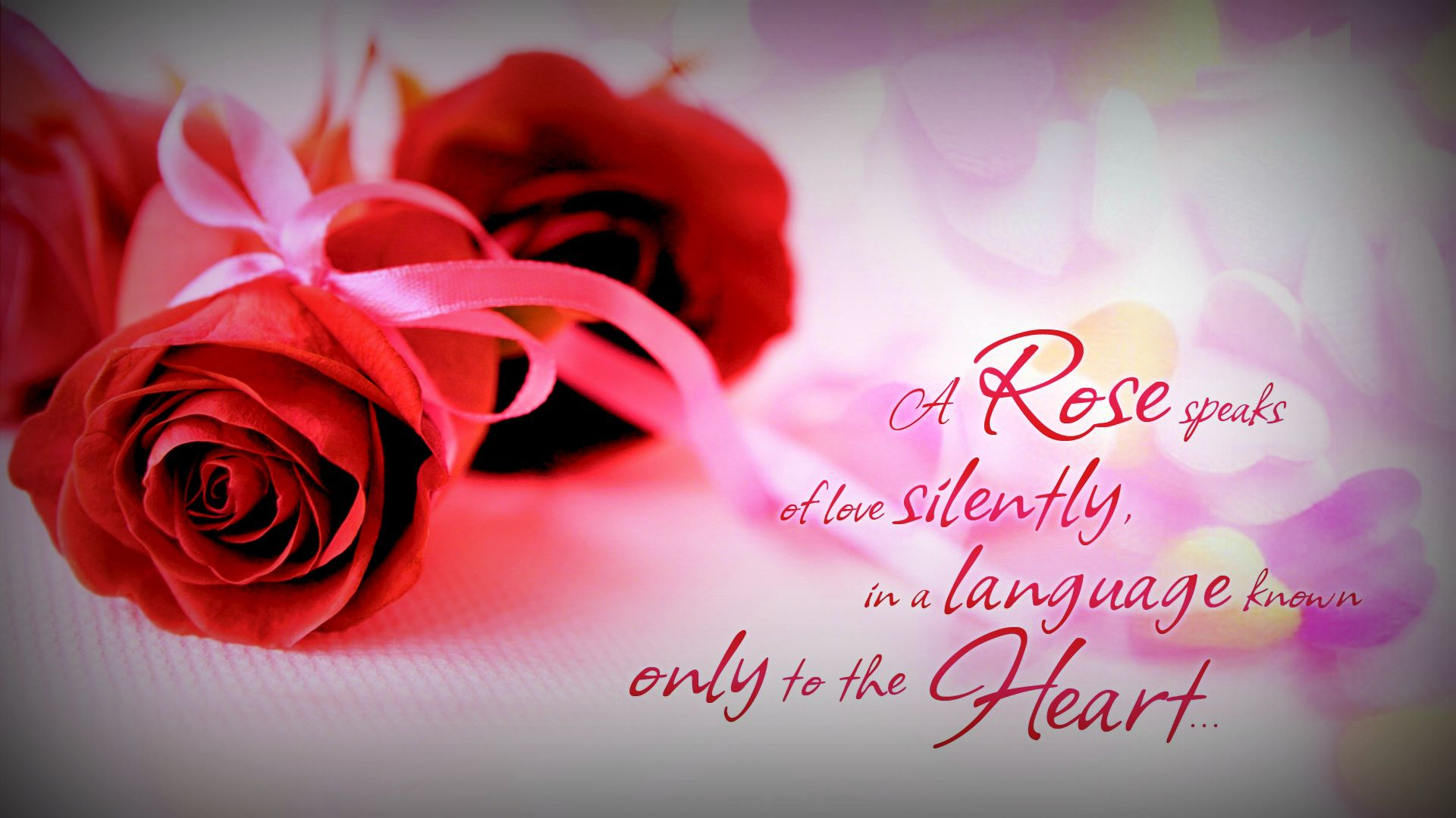Love Quotes For Him With Roses : ... rose-with-love-quotes-rose-wallpapers-with-love-quotes-rose-love
