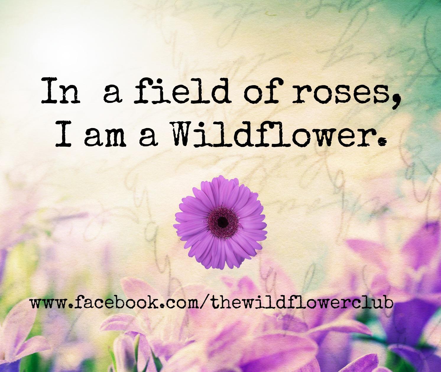 Wild Flower Quotes QuotesGram