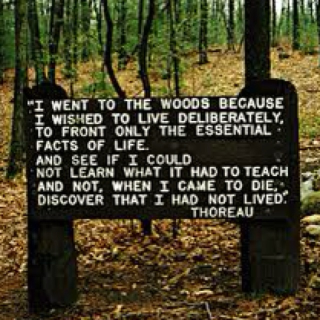Woods Quotes: Thoreau Woods Quotes. QuotesGram