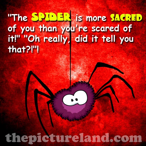 Funny Scared Quotes: Scared Of Spider Funny Quotes. QuotesGram