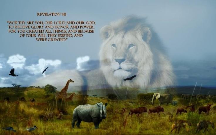 Lion Spirit Animals Qu...