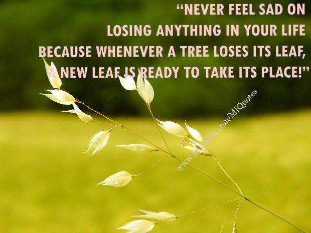 Sad Meaningful Quotes Quotesgram