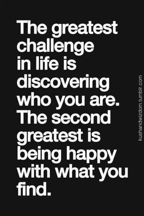 Obstacles In Life Quotes. QuotesGram